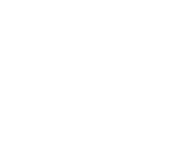 Logo Vision Trip